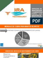 Suministro y Mantenimiento de Plantas Tecnologias Cobra Ltda..pdf