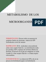 metabolismo microorganismos