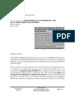 Alegatos Finales Consorcio Pitalito