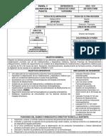 PERFIL HOSPITAL FARMACIA.docx