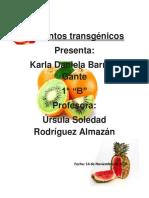 Alimentos Transgénicos - Copia