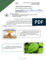 Guía 4 Cambios de Estado en La Naturaleza