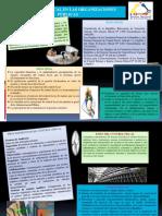 Control Fisal Infografia Ana Marquez