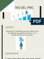 Metas Del Pmc
