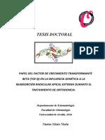 TESIS DOCTORAL, NURIA NIETO NIETO.pdf