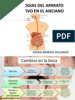 Patologias Del Aparato Digestivo en El Anciano