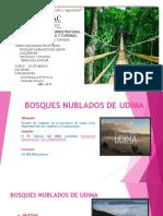 Area Natural Protegida Santiago