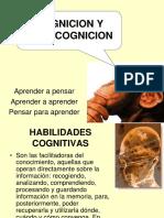 COGNICION Y METACOGNICON