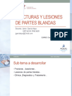 2 1Fracturas y Luxaciones- Clasificacion y Procedimientos
