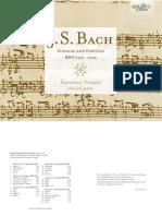 Bach Guitar Tab