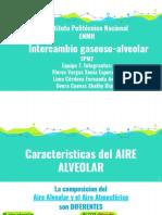 Intercambio gaseoso-alveolar