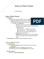(very) Brief Notes on Plant Tissues
