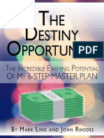 TheDestinyOpportunity.pdf