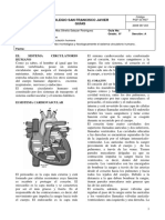 GUIA  9 CIENCIAS SEXTO circulacion humana.pdf