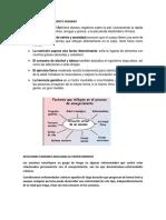 FACTORES DEL ENVEJECIMIENTO HUMANO eexposicion.docx