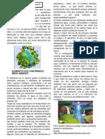 FICHA DE TRABAJO MEDIO AMBIENTE 2DO GRADO DE SECUNDARIA-CC.SS.docx