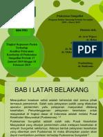 minipro dokter iship sungailiat periode 2018-2019
