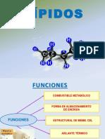 5ta Clase Estructura de Lipidos