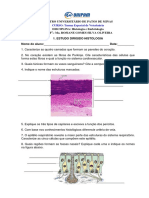 Estudo+Dirigido+HISTOLOGIA