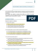 Gestion de PRL en la Empresa.pdf
