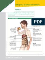 01_adaptacion_curricular_03.pdf