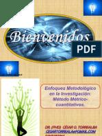 Dr Cesar Torrealba Postura Epistemologica Analisis Metrico