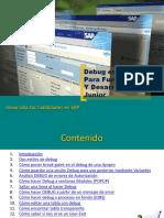 debugg.pdf