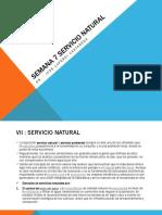 Servicio Natural 7