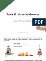 Presentaci_n Tema 12 Psicobio