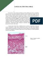 Revisão - Mucosa Oral