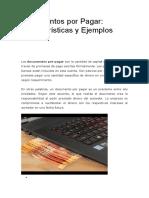 Documentos Por Pagar