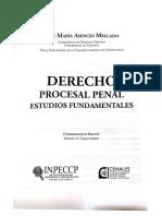 Asencio Mellado, El imputado en el proceso penal español