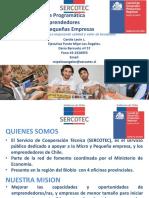 Programas Sercotec Difusion 2019 DIFUSION