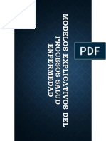 8 Modelos Teoricos Explicativos Del Proceso Salud Enfermedad