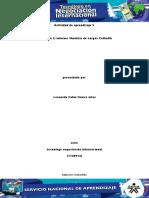 420846986 Evidencia 2 Formato Descripcion y Analisis de Cargo 1