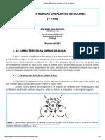 1 Características Da Molécula de Água