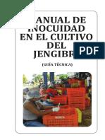 Manual-BPM-de-jengibre-diagramacion-definitiva-6.pdf