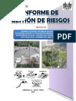 Informe de Riesgos 2019
