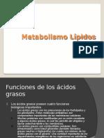 1-MetabolismoLipidos