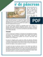Cancer de Pancreas e Higado