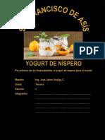 Yogurt de Níspero