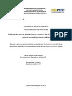 Relatório PIVIC Finalizado Mariana