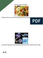 Escuelas Pedagógicas. Modelo Pedagógico y Policentrico - Monografias.com