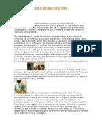 Violencia y Conflictos Internos en El Peru