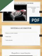 Patologia Locomotor Medicina  Veterinária