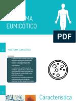 Micetomas Eumicotico