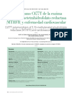 Polimorfismo C677 de La Enzima 5.10- Metelinetetrahidrofolato