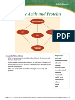 Nucleic Acids and Proteins Reading