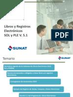 Libros_y_Registros_Electrnicos.pdf
