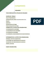 El Proceso de La Organización
